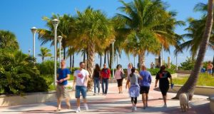 How to book Miami tour packages