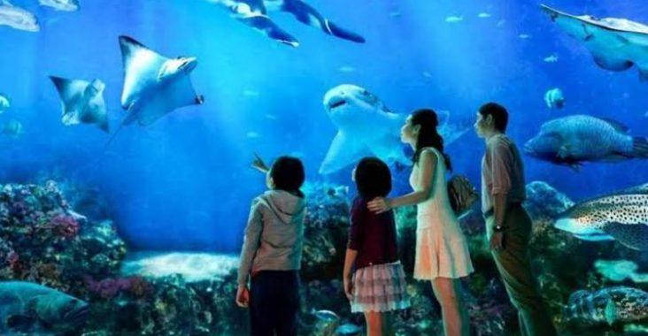 Singapore, Underwater World
