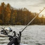 Pinecrest Lake The Best Fishing in the Motherlode Foothills